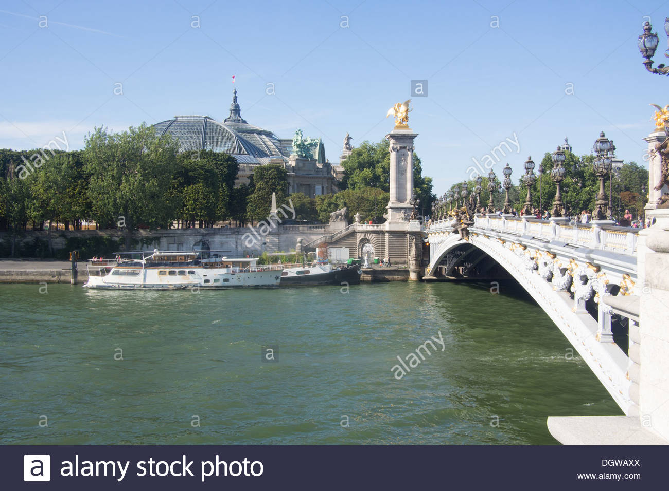 Alexandra III bridge on the River Seine and the Grand Palace in the background, Paris, France. - Stock Image