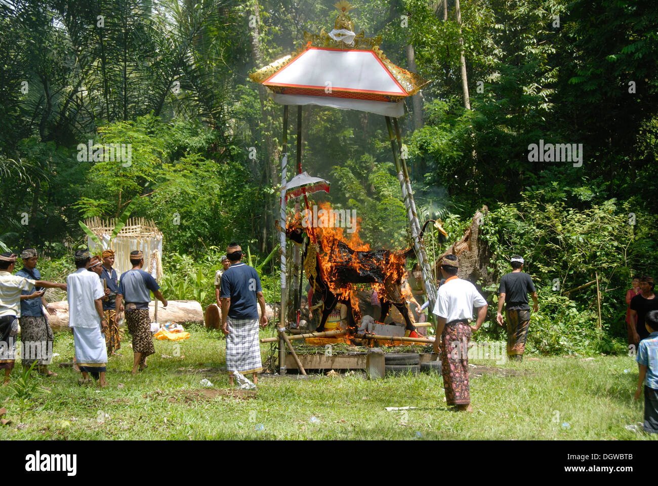 Bali Hinduism, Funeral ceremony, cremation of body in a cow-shaped shrine, Bongkasa near Ubud, Bali, Indonesia, Southeast Asia - Stock Image