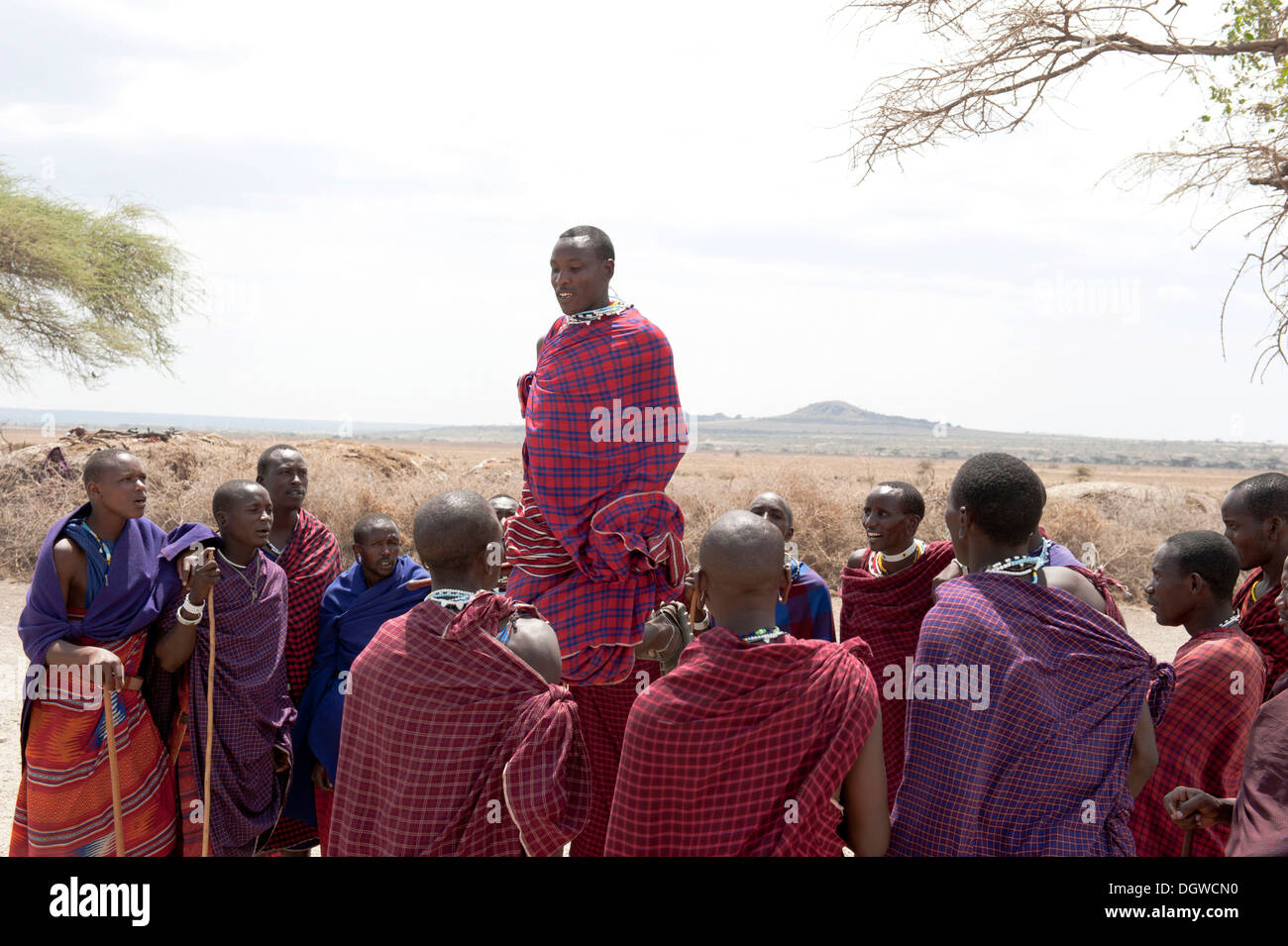 Ethnology, group of men, man jumping while dancing, Masai, village of Kiloki, Savannah, Ngorongoro Conservation Area - Stock Image