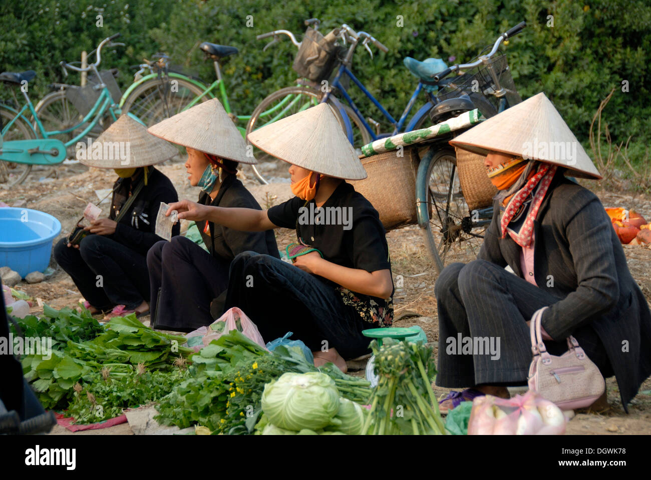 Vietnamese Hats High Resolution Stock Photography And Images Alamy