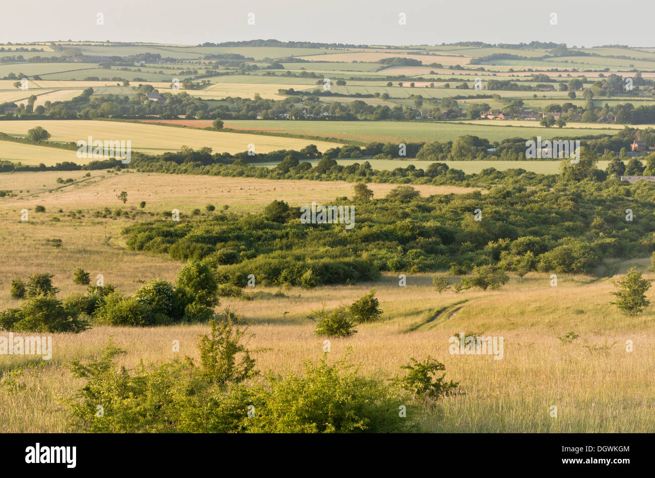 Martin Down National Nature Reserve (NNR) looking north from the chalk scarp. Chalk downland, Hants. - Stock Image