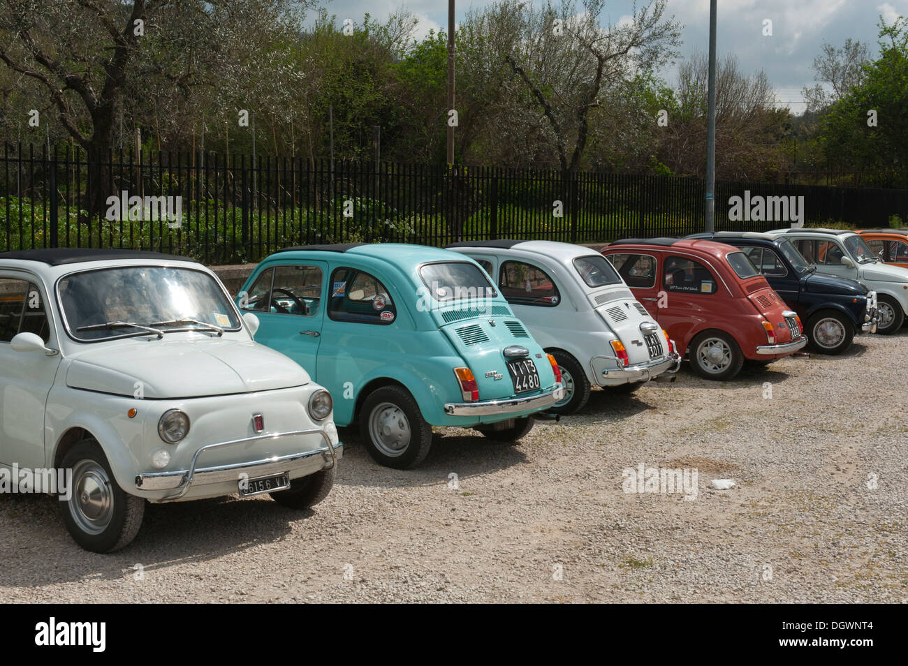 Fiat 500, small cars parked in a row, Bolsena, Lazio, Italy, Southern Europe, Europe - Stock Image