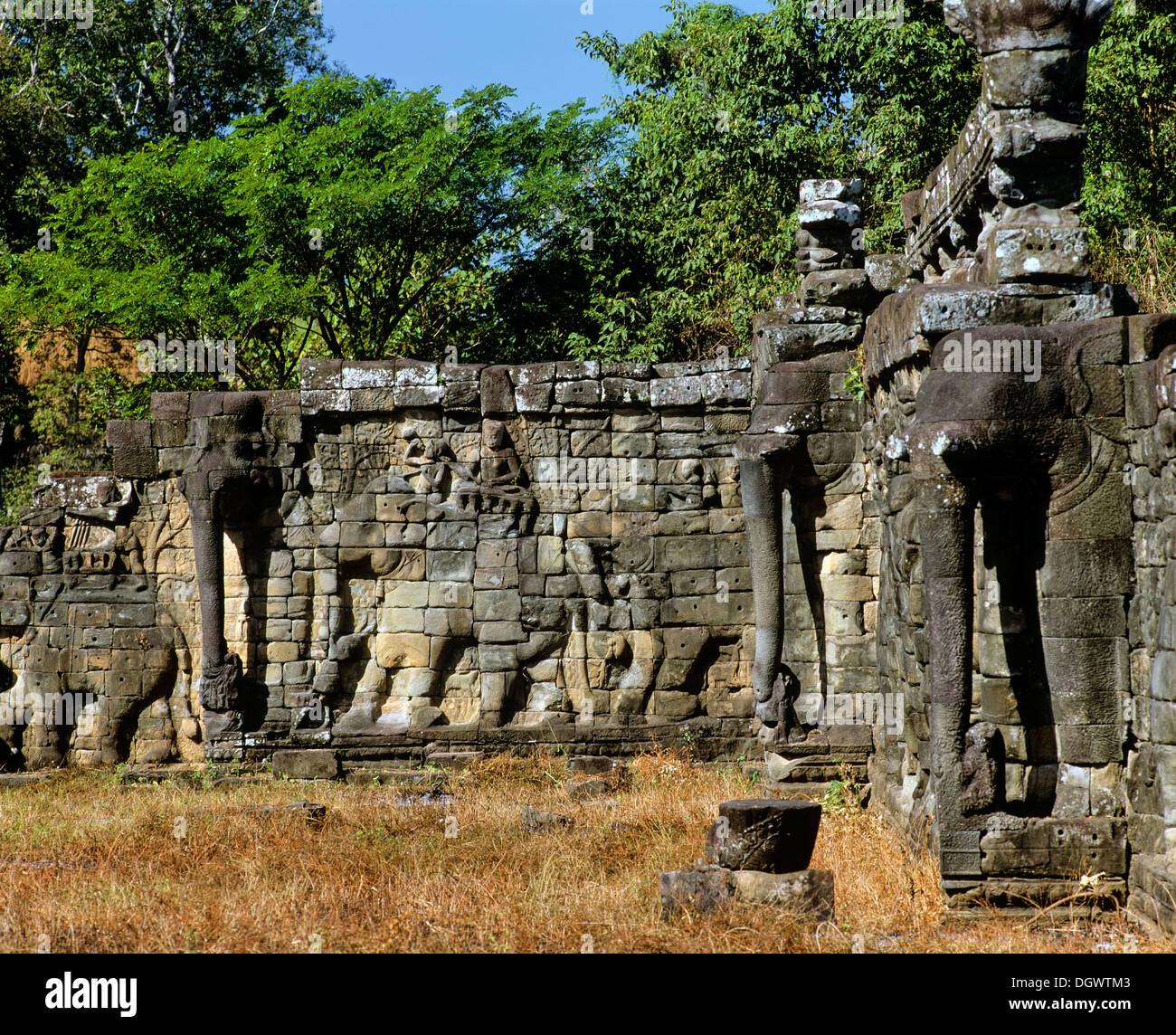 Terrace of the Elephants, wall-reliefs, Angkor Thom, Siem Reap Province, Cambodia - Stock Image