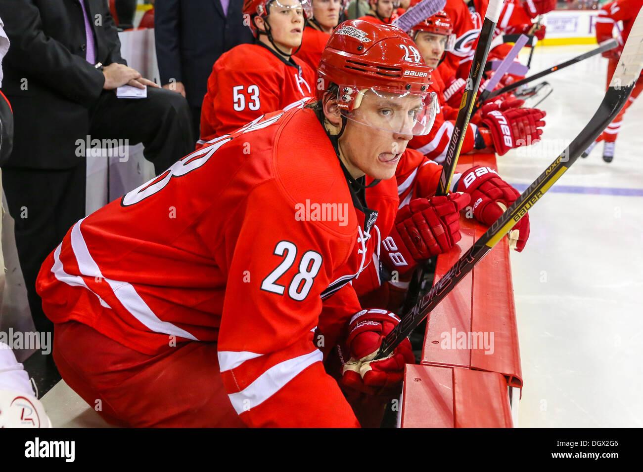 Carolina Hurricane Alexander Semin during an NHL hockey game during the 2013-2014 season - Stock Image