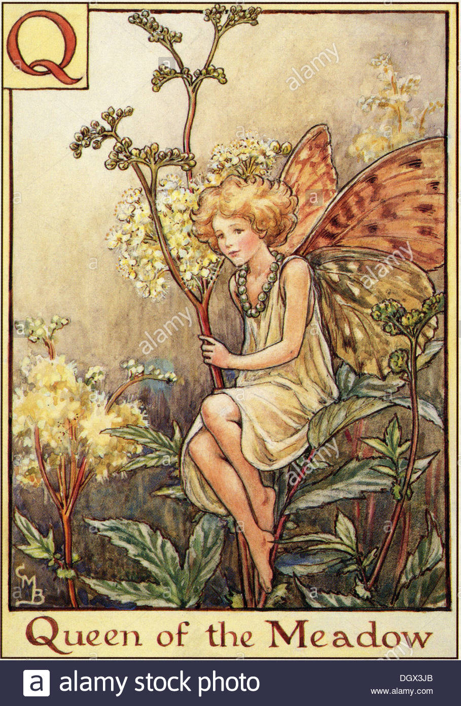 Flower Fairies Illustration by Cicely Mary Barker - The Queen of the Meadow Fairy, 1934 - Stock Image