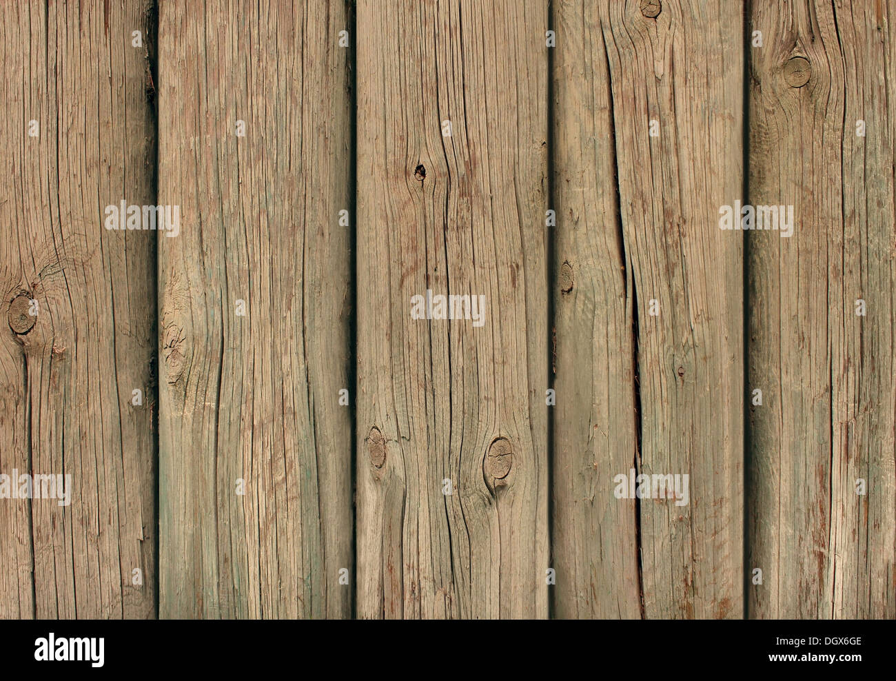 Old weathered wood background with thick cut tree trunks as a grunge distressed antique wall of planks in a vertical - Stock Image