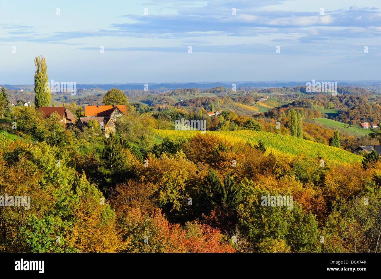 Suedsteirische Weinstrasse, Southern Styria wine route in autumn, Austria, Styria, Southern Styria, Glanz Stock Photo