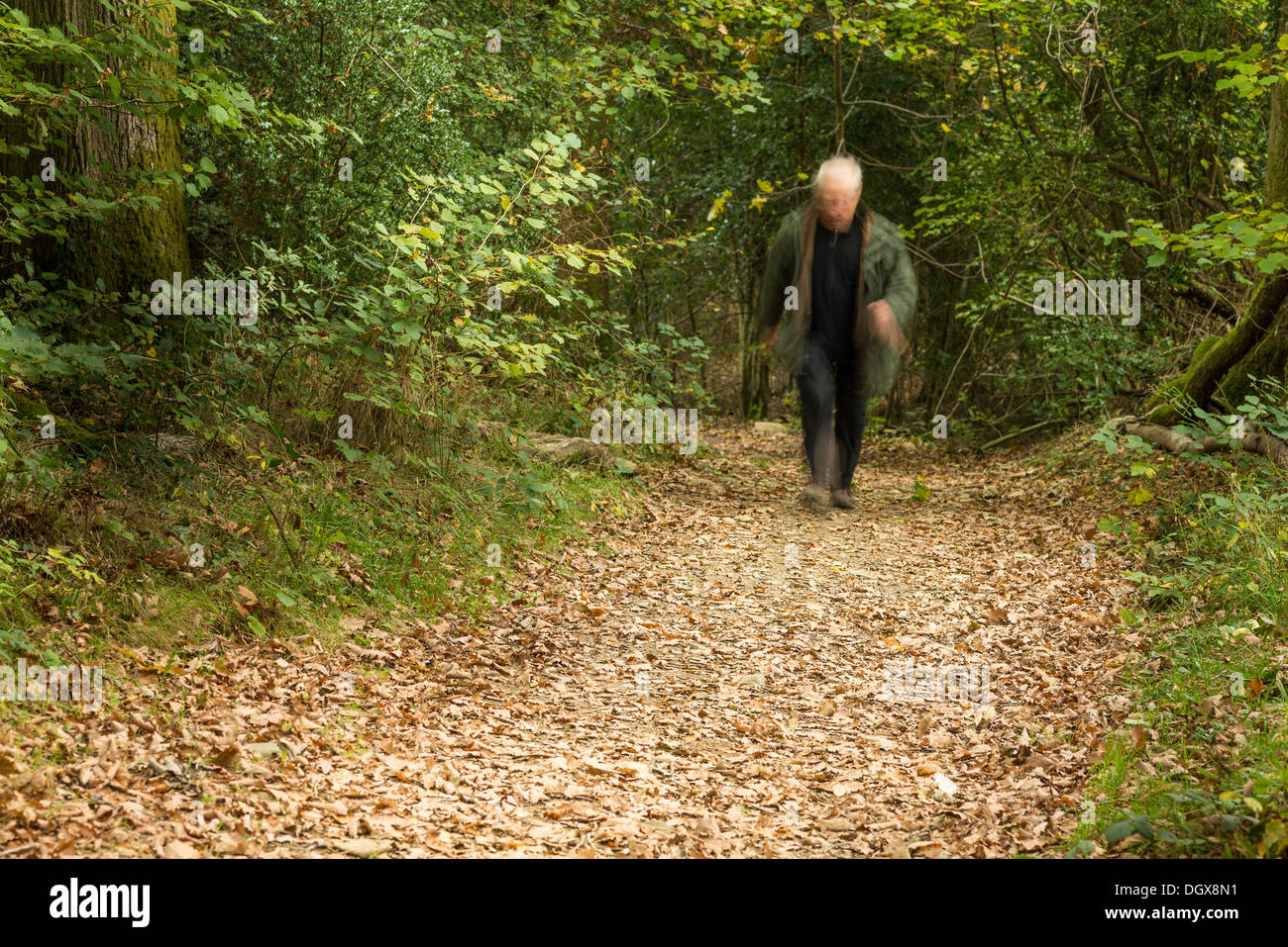 White or silver haired senior citizen in a hurry along a woodland path. - Stock Image