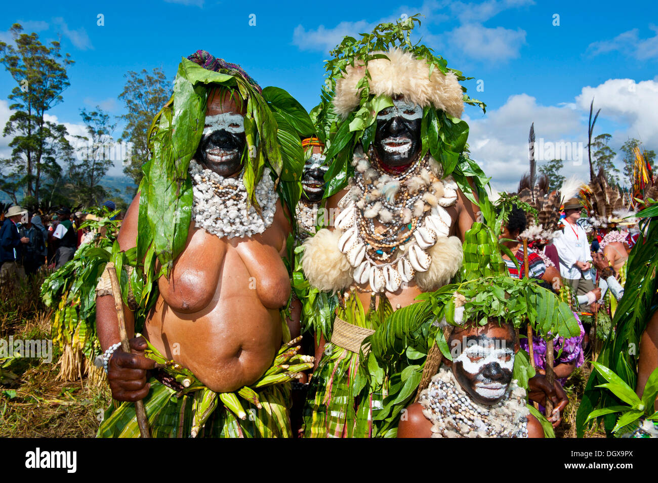 Members of a tribe in colourfully decorated costumes with face paint at the traditional sing-sing gathering, Hochland - Stock Image