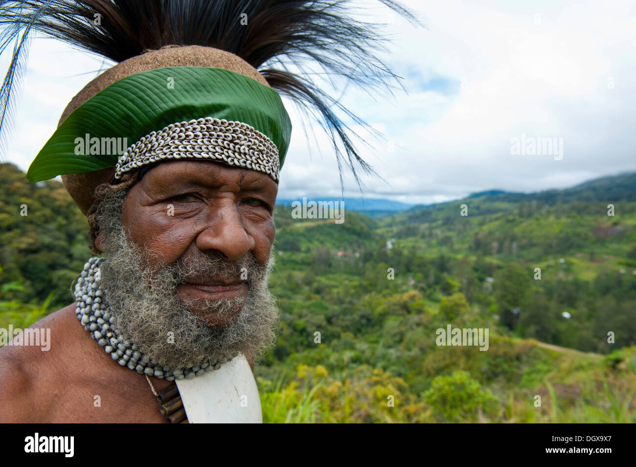 Traditionally dressed tribal chief in the Highlands, Paya, Highland, Papua New Guinea - Stock Image