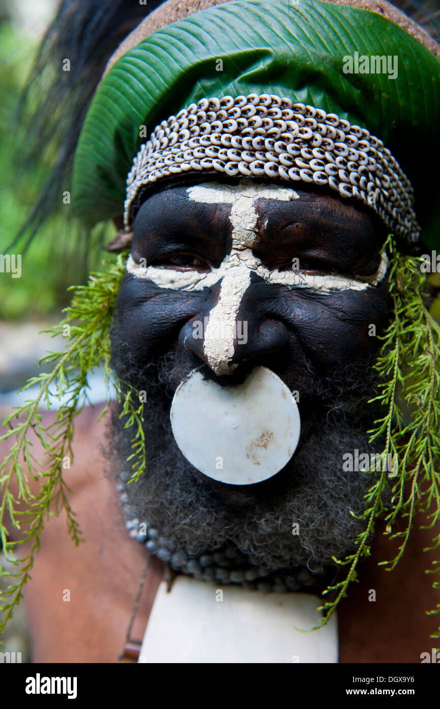 Decorated and painted tribal chief, Hochland, Paya, Highland, Papua New Guinea - Stock Image