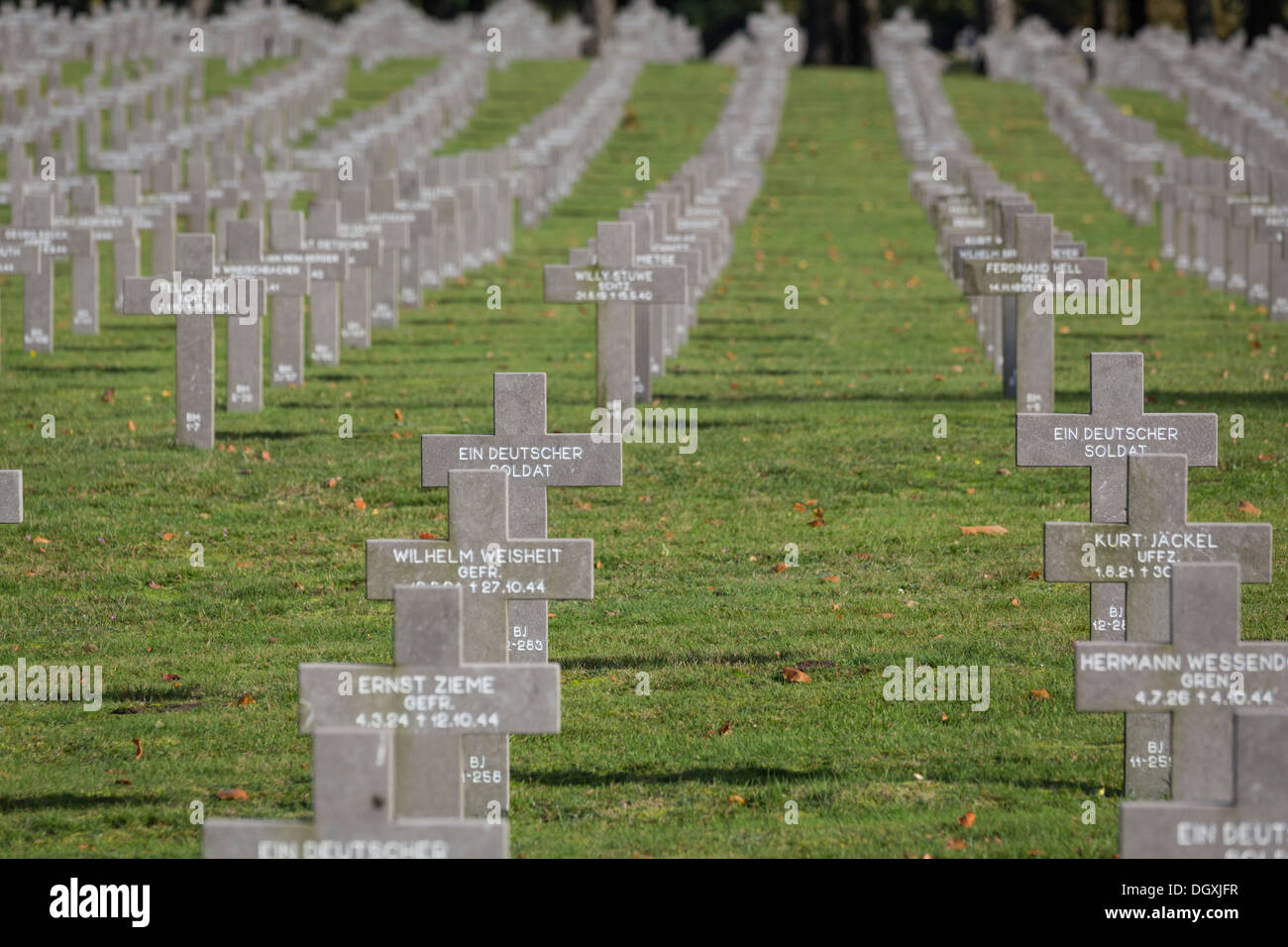 The German war cemetery at Ysselsteyn in the Netherlands - Stock Image