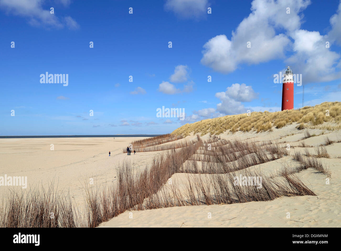 Eierland Lighthouse with dunes, De Cocksdorp, Texel, West Frisian Islands, province of North Holland, The Netherlands - Stock Image
