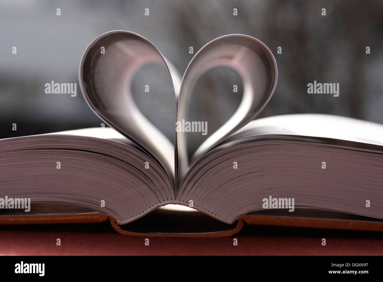 Book pages, heart-shape, love story - Stock Image