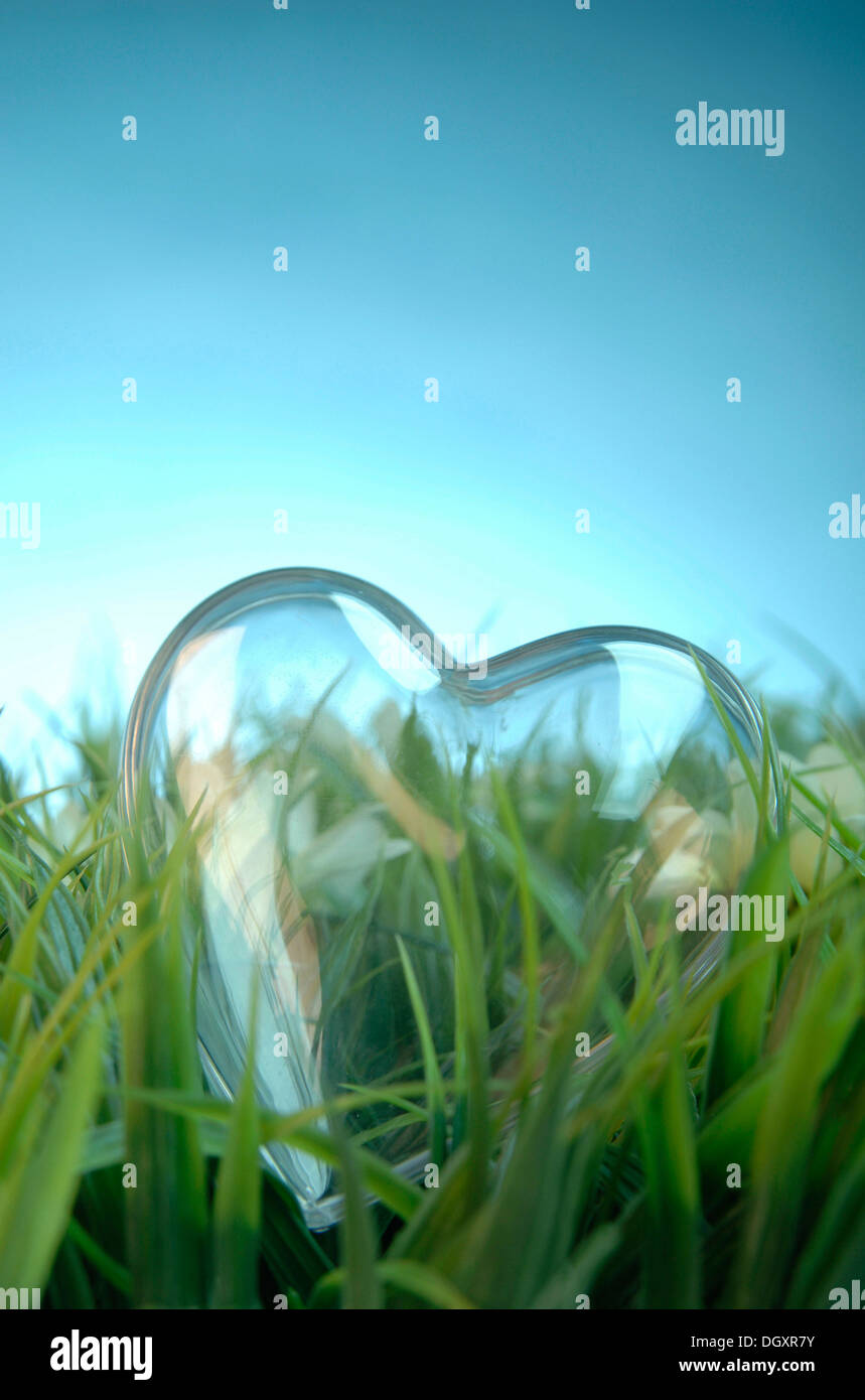 Transparent heart lying on a meadow - Stock Image