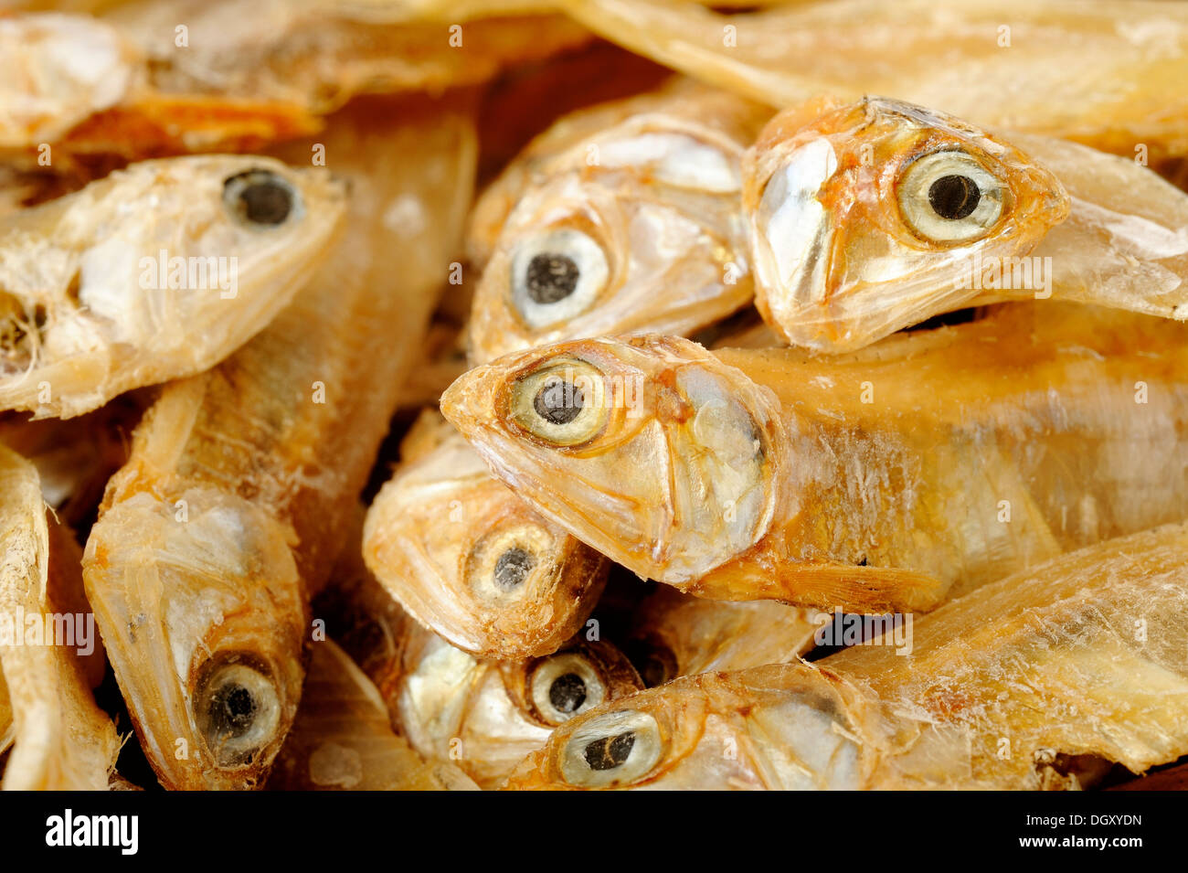 Dried salted fish - Stock Image