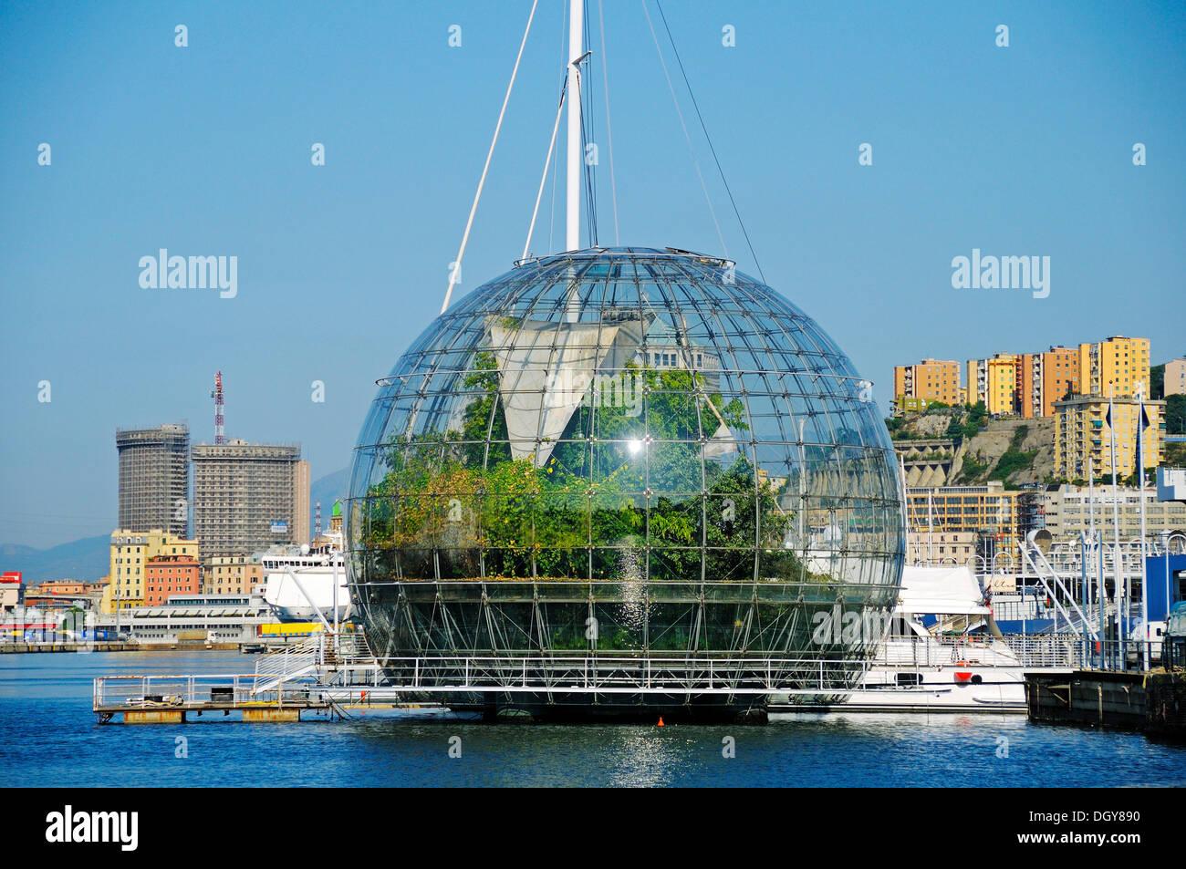Biosfera glass sphere with a rainforest ecosystem, Porto Antico, Old Port, Genoa, Liguria, Italy, Europe - Stock Image