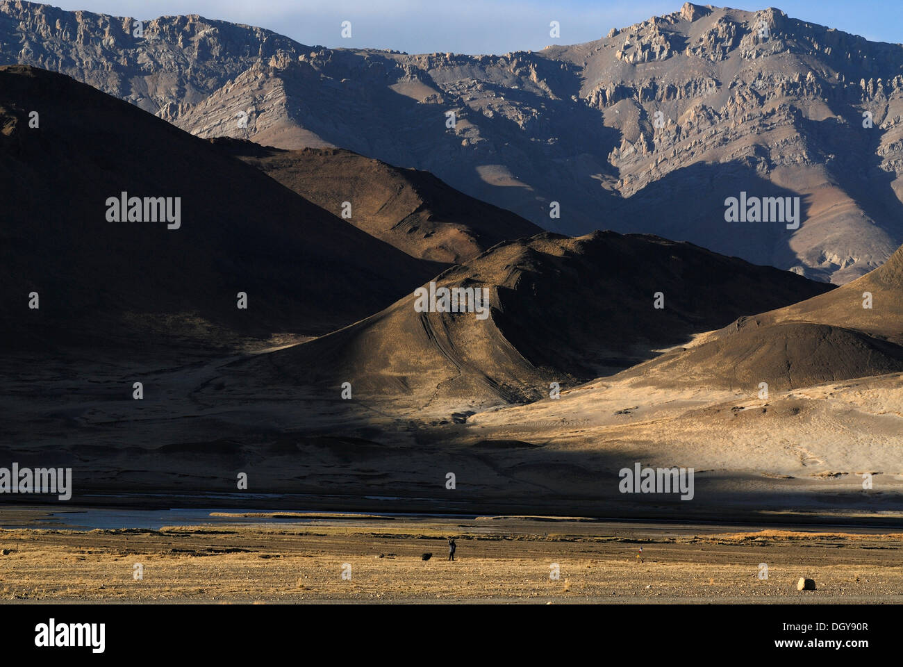 Shepherd with a dog in front of the dry brown landscape of the Himalayas at the Friendship Highways on the plateau of Tingri - Stock Image