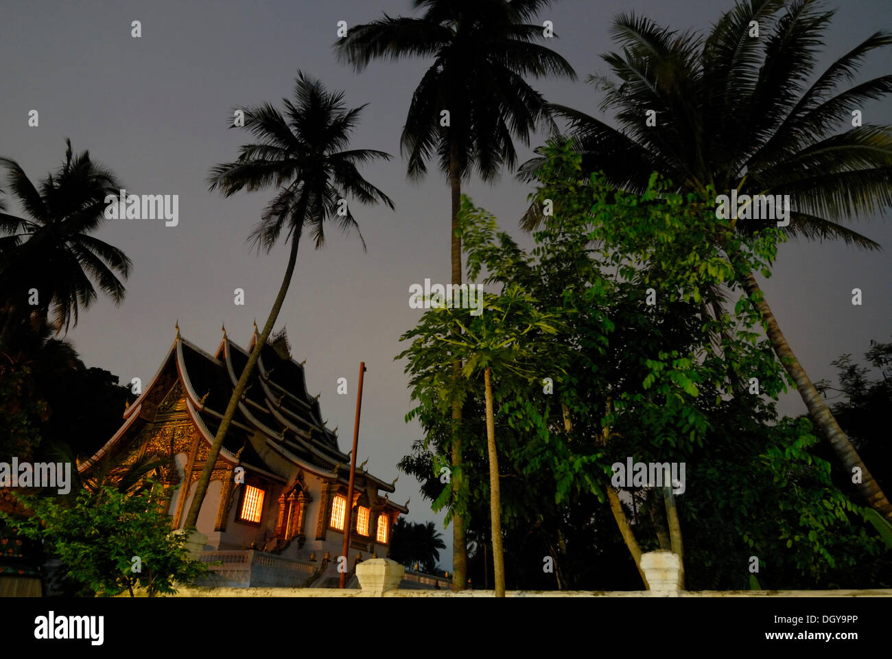 Palm trees and the Buddhist temple of Wat Ho Pha Bang on the grounds of the Laotian Royal Palace in Luang Prabang in the early - Stock Image