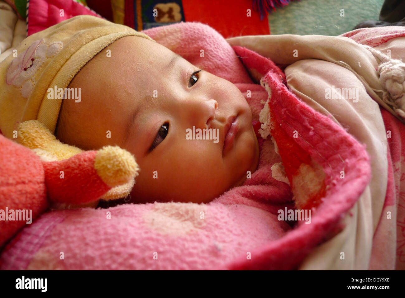 Young baby, few months, little girl, warmly wrapped in thick blankets, Manasarovar Lake, Western Tibet, Ngari province, Tibet - Stock Image