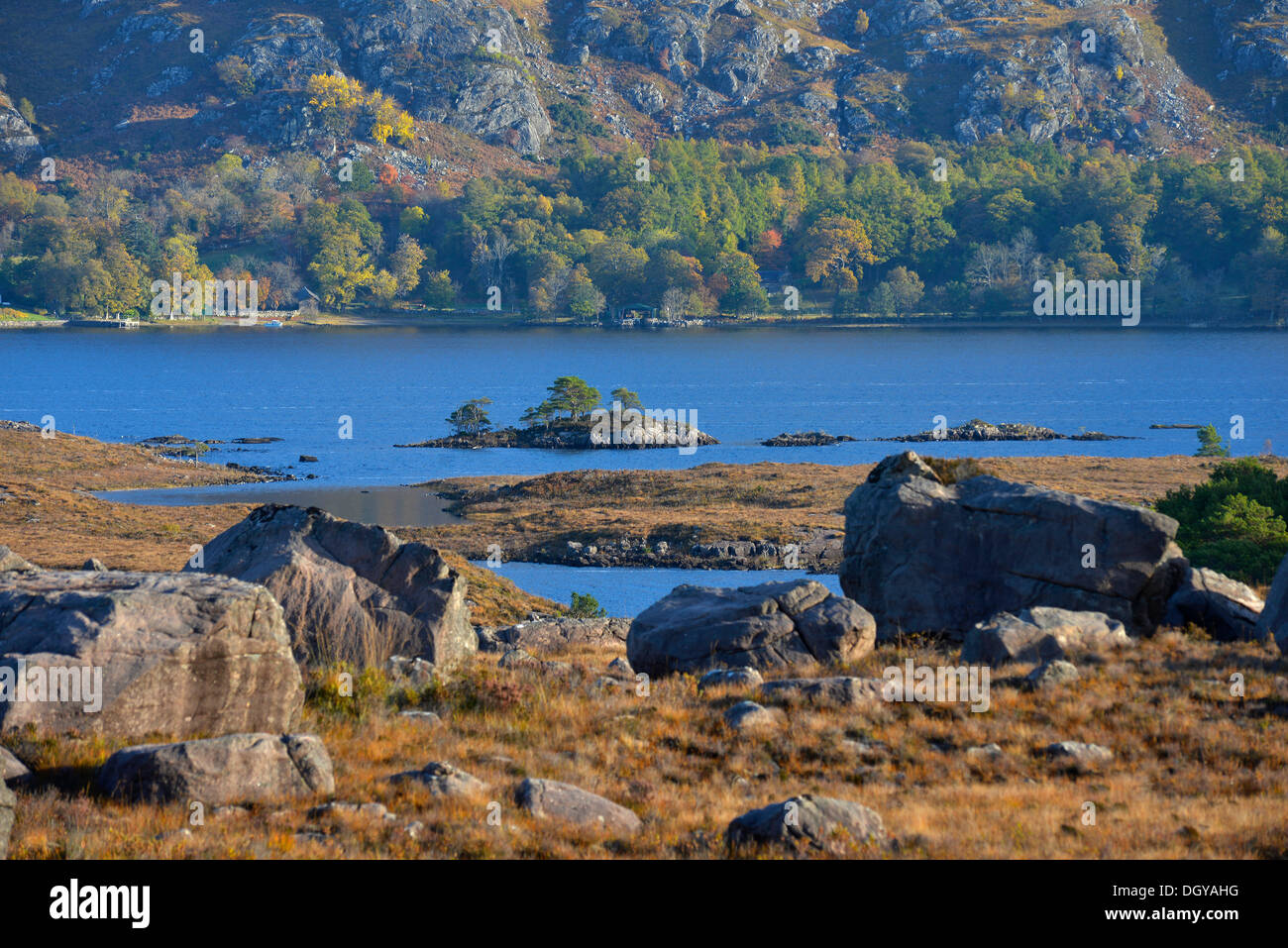 Loch Maree, Beinn Eighe National Nature Reserve, SNH, Kinlochewe, Scottish Highlands, Wester Ross, Scotland, United Kingdom - Stock Image