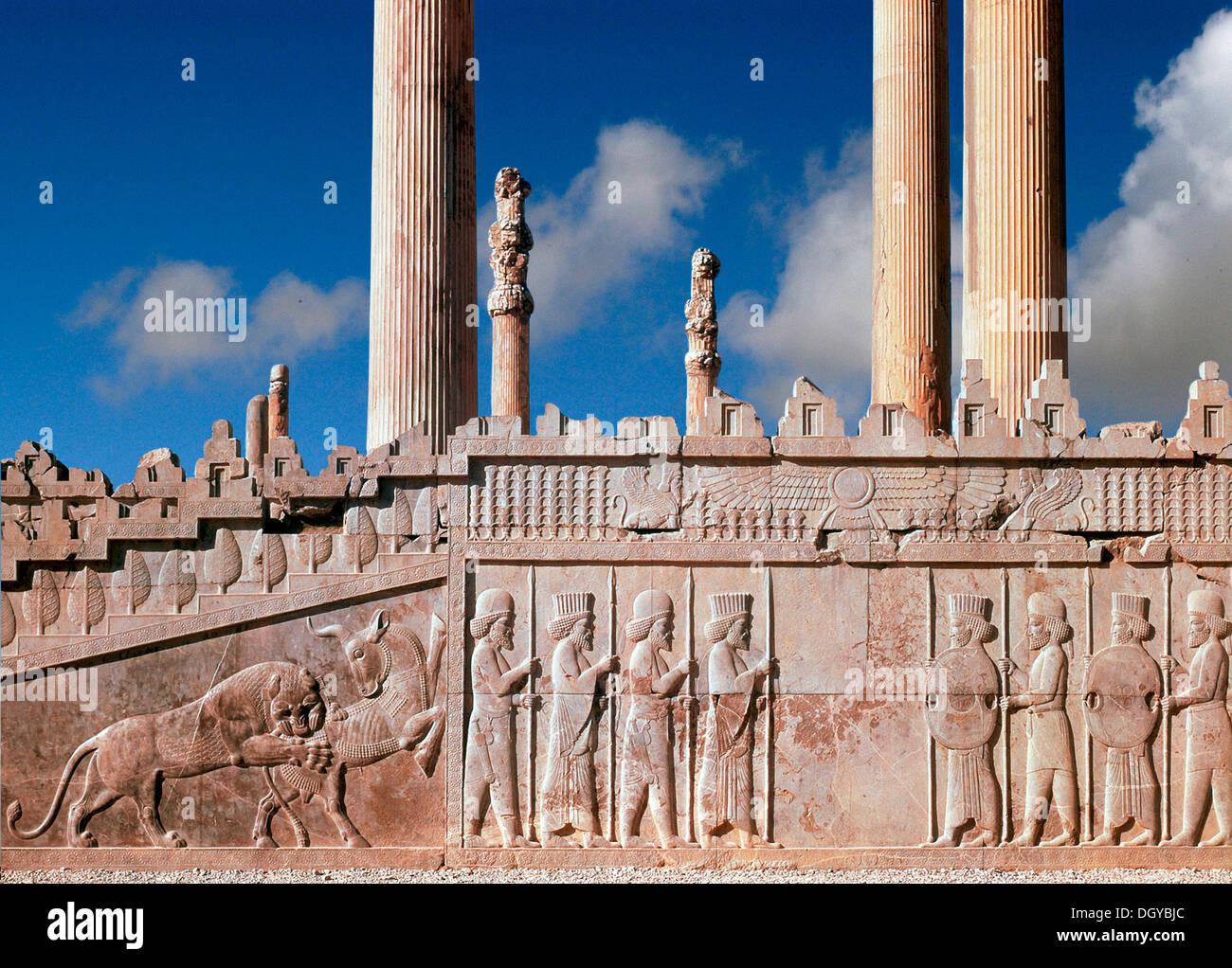 5713 Persepolis Iran Remains Of King Darius I Audience Hall Stock Photo Alamy