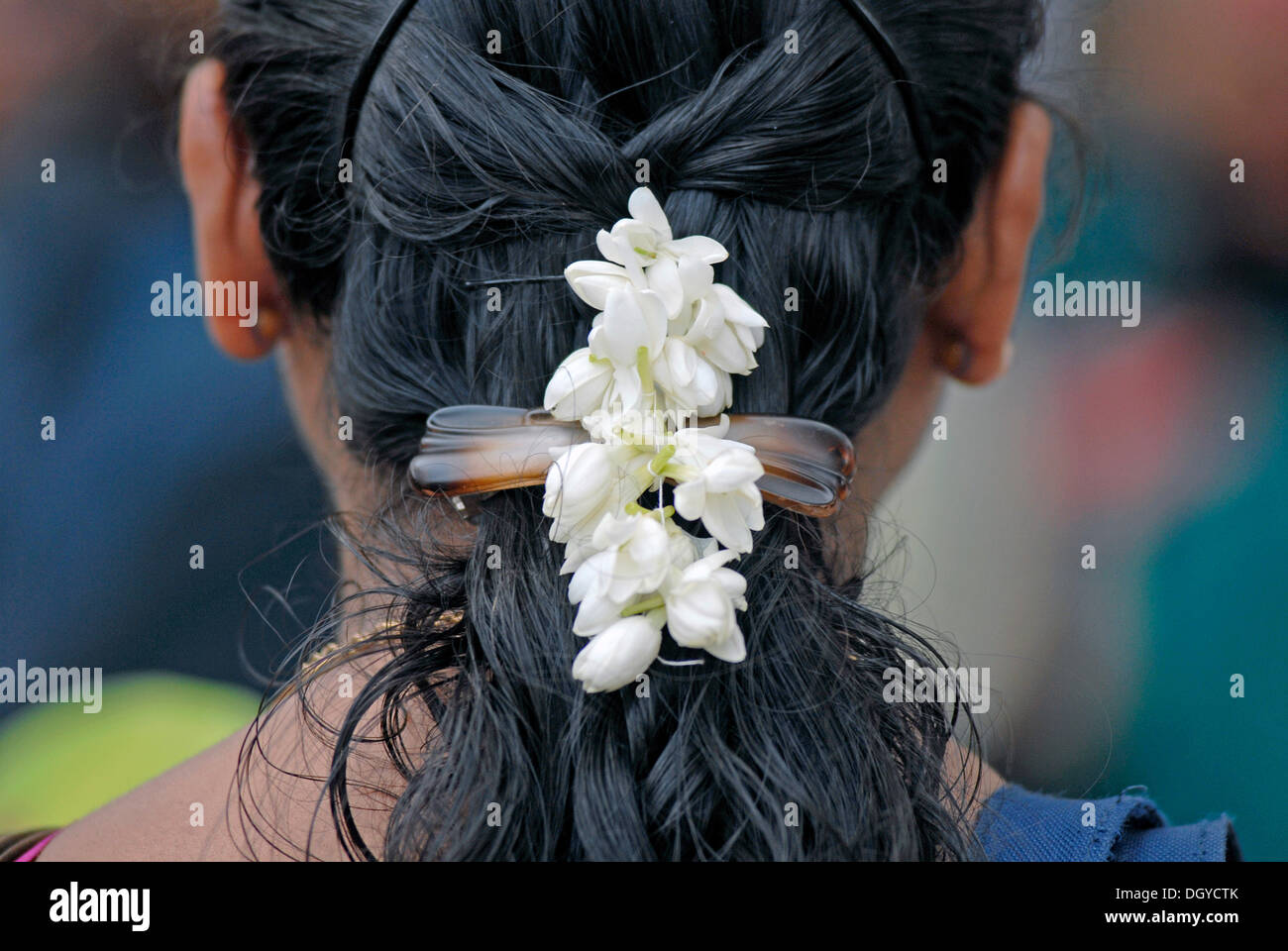 India jasmine hair stock photos india jasmine hair stock images woman with jasmine flowers in her hair guruvayur temple kerala southern india izmirmasajfo