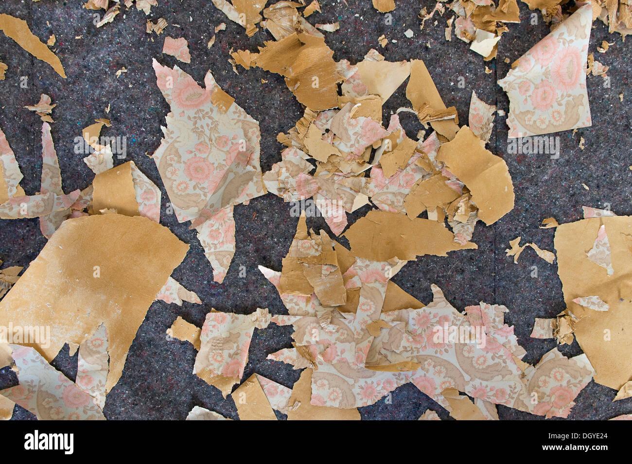 Wallpaper peelings from the sixties, Stuttgart, Baden-Wuerttemberg - Stock Image