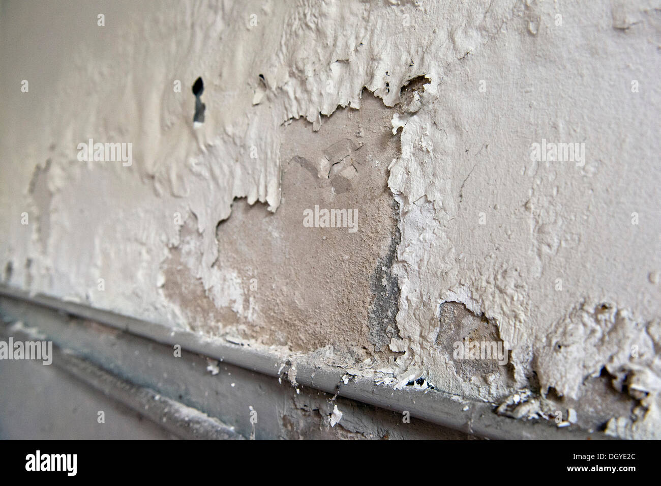 Nitre or saltpeter in masonry from penetrating moisture from the outside, flaking lime, Stuttgart, Baden-Wuerttemberg - Stock Image