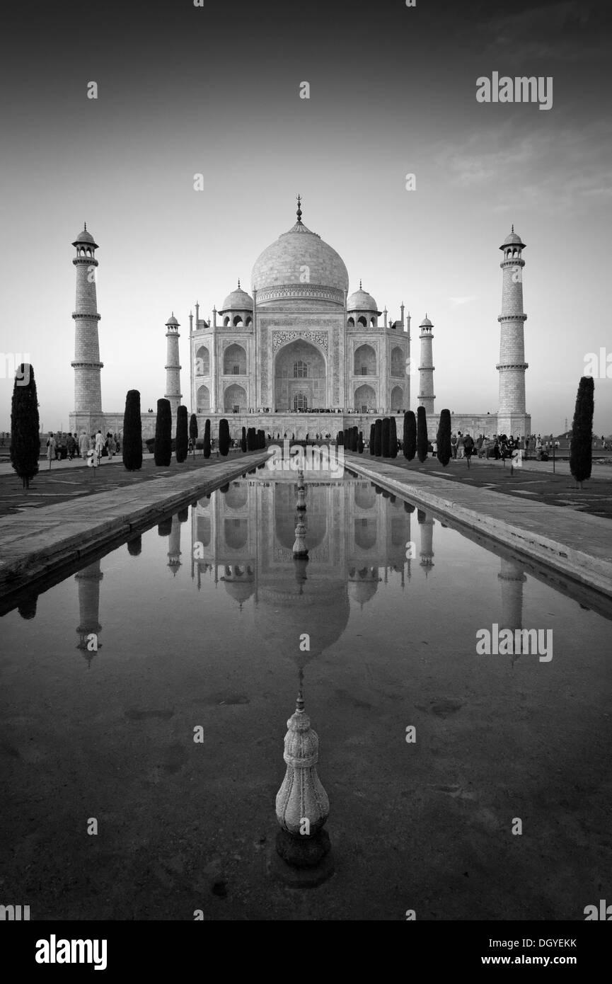 Taj Mahal, mausoleum, UNESCO World Heritage Site, reflected in a pool of water, Agra, Uttar Pradesh, India - Stock Image