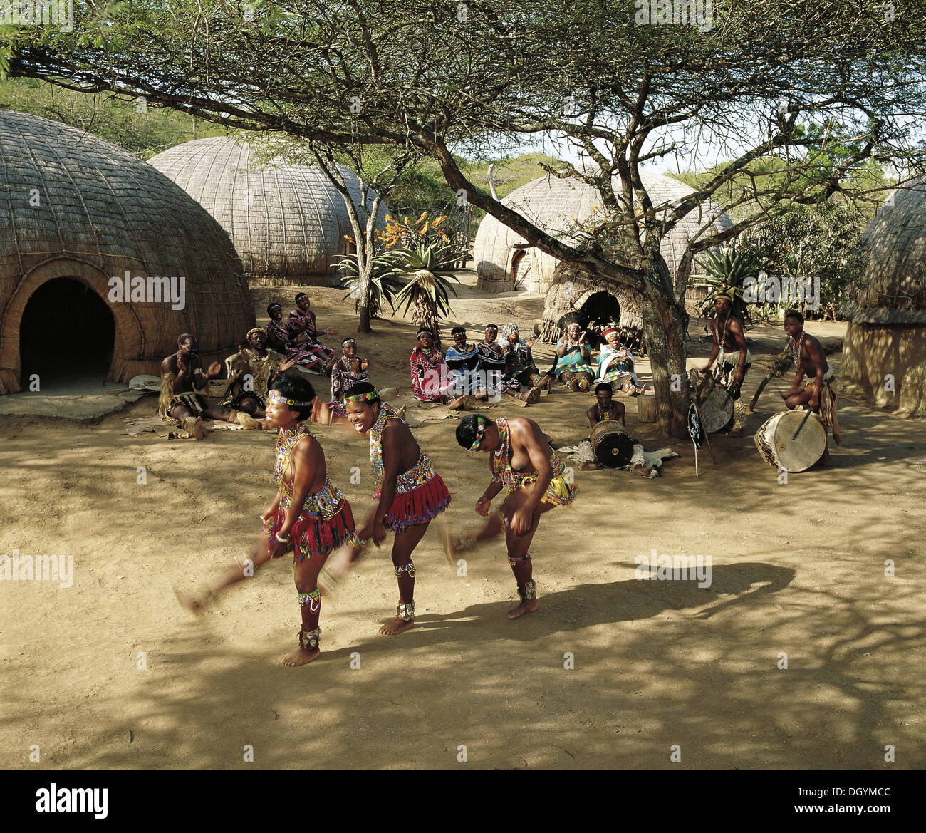Zulu girls are usually first to dance at a great gathering - Stock Image