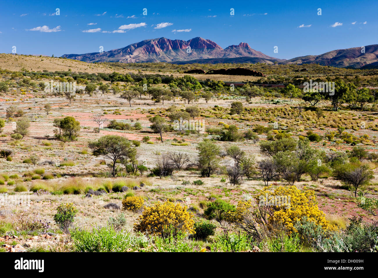 Mt. Sonder, West MacDonnell National Park, Northern Territory, Australia Stock Photo