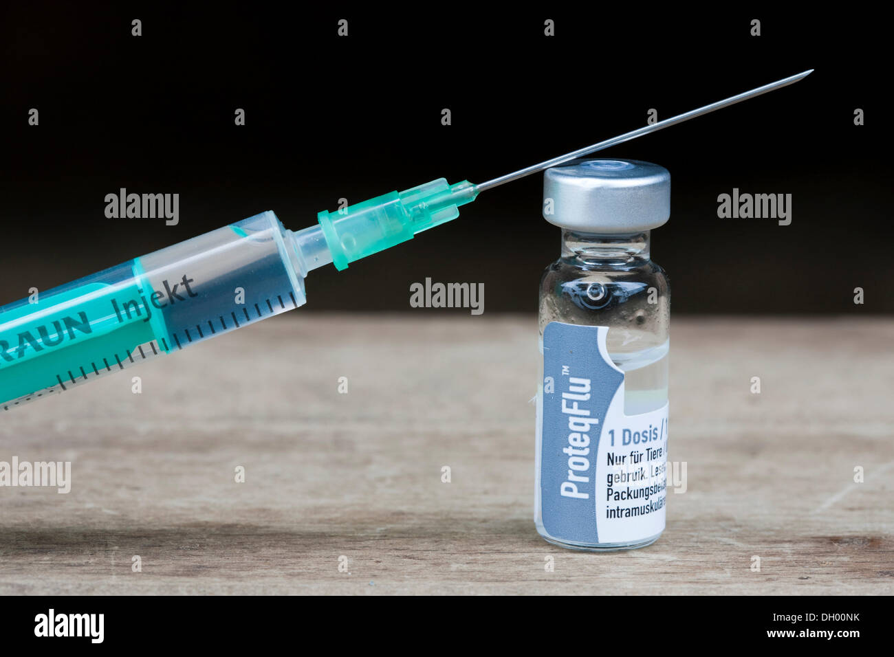 Influenza vaccine for horses, bottle of serum and an injection needle - Stock Image