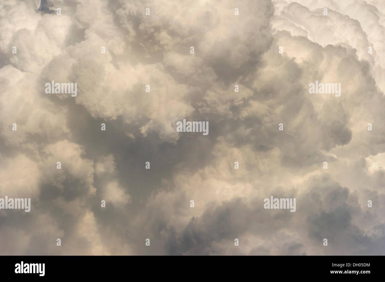 Cumulonimbus cloud, thundercloud, detail, Marzling, Upper Bavaria, Bavaria, Germany - Stock Image