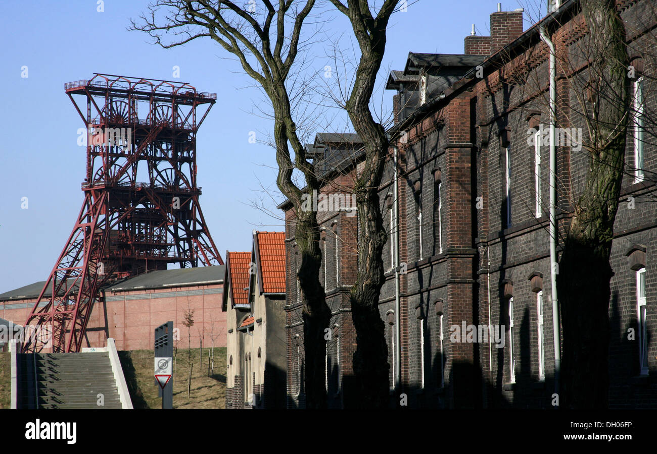 Miners' houses and the headframe or gallows frame of the Consolidation Coal Mine Industrial Complex, Gelsenkirchen - Stock Image