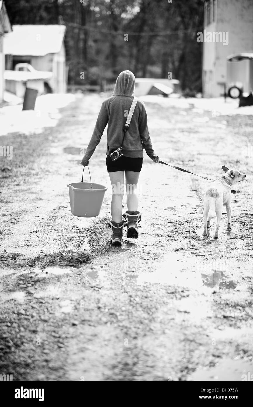 Bare legged woman in hooded shirt walks her leashed dog on winter walk on the farm to fetch a pail of water. Stock Photo