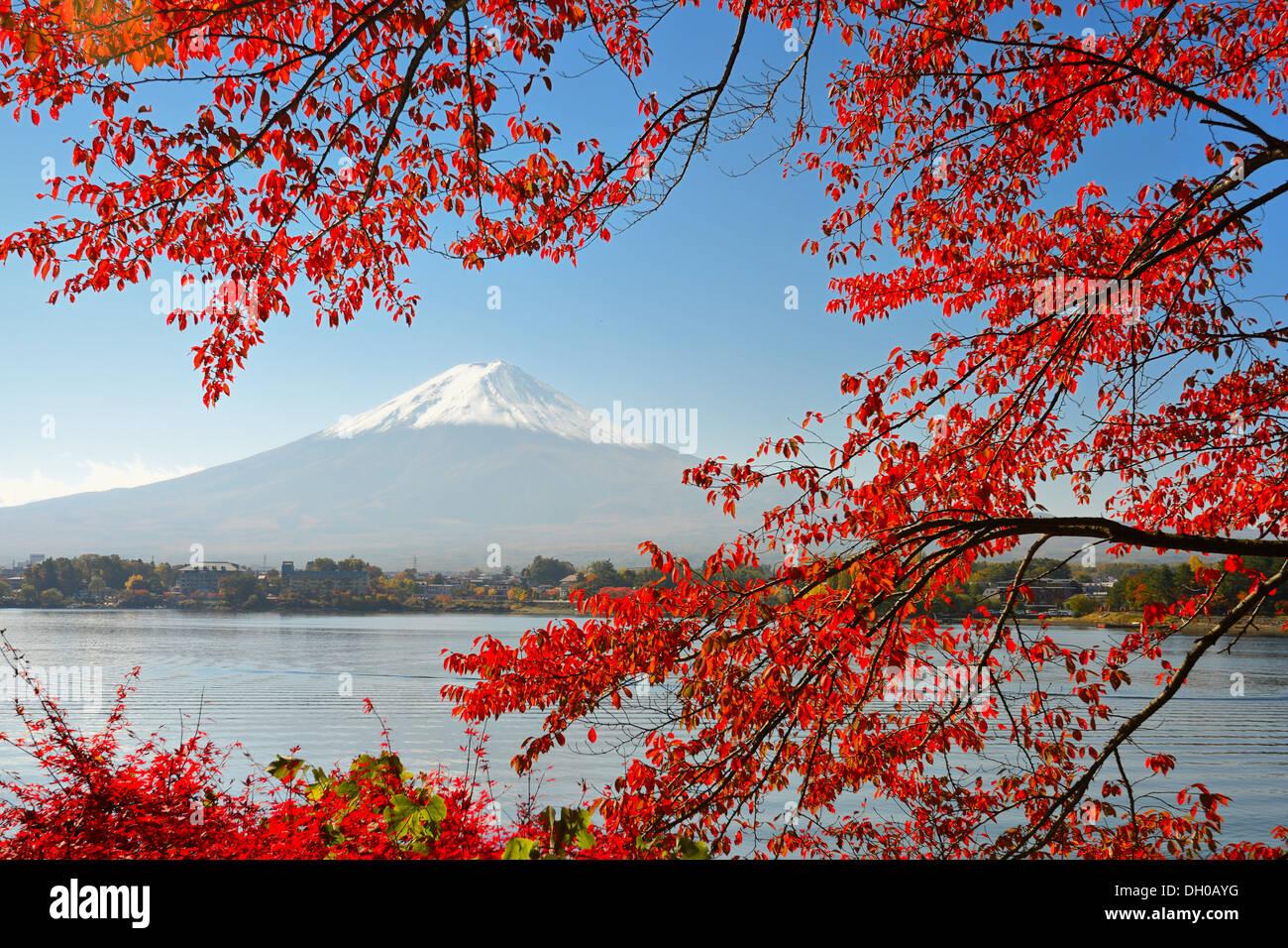 Mt Fuji in the Fall season. - Stock Image