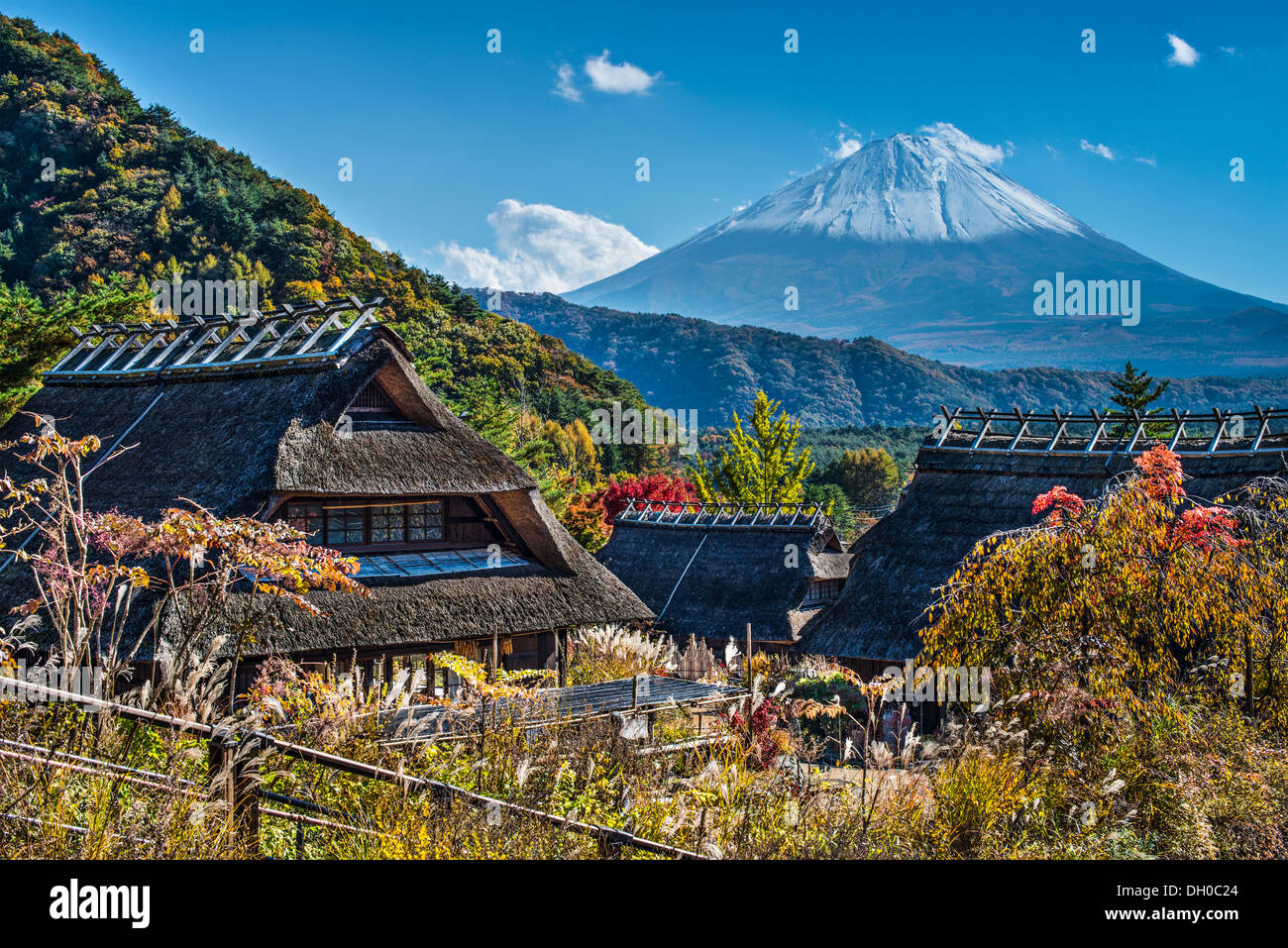 Mt Fuji viewed from Iyashinofurusato near Lake Saiko in Japan. - Stock Image