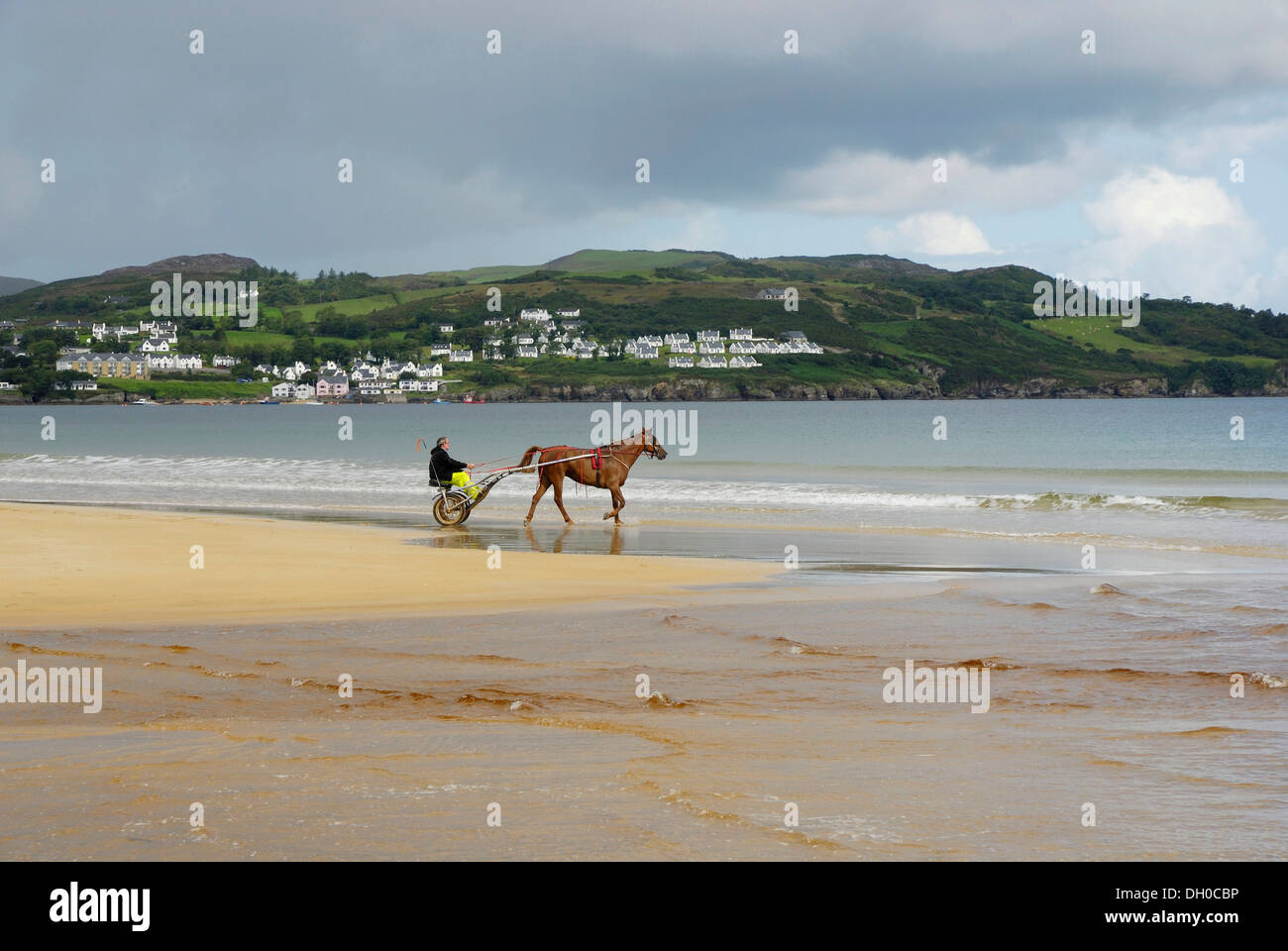 Trotter training with his horse on the sandy beach of Portsalon, County Donegal, Ireland, Europe - Stock Image