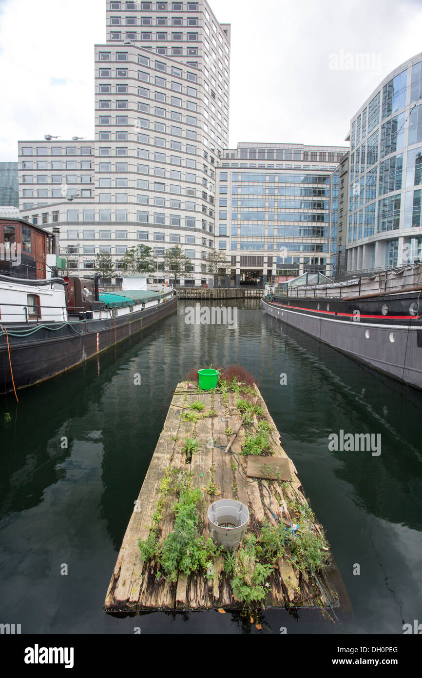 26/10/2013 Barge and Canary Wharf, Docklands, London, England, UK - Stock Image
