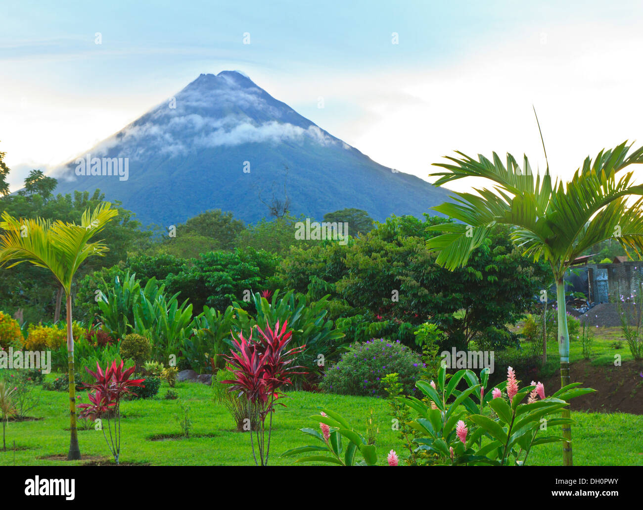 A lush garden in La Fortuna, Costa Rica with Arenal Volcano in the background - Stock Image