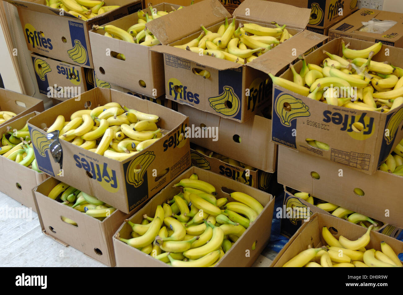 Boxes of bananas stored for riders in the Dartmoor classic cyclosportive 2013 - Stock Image