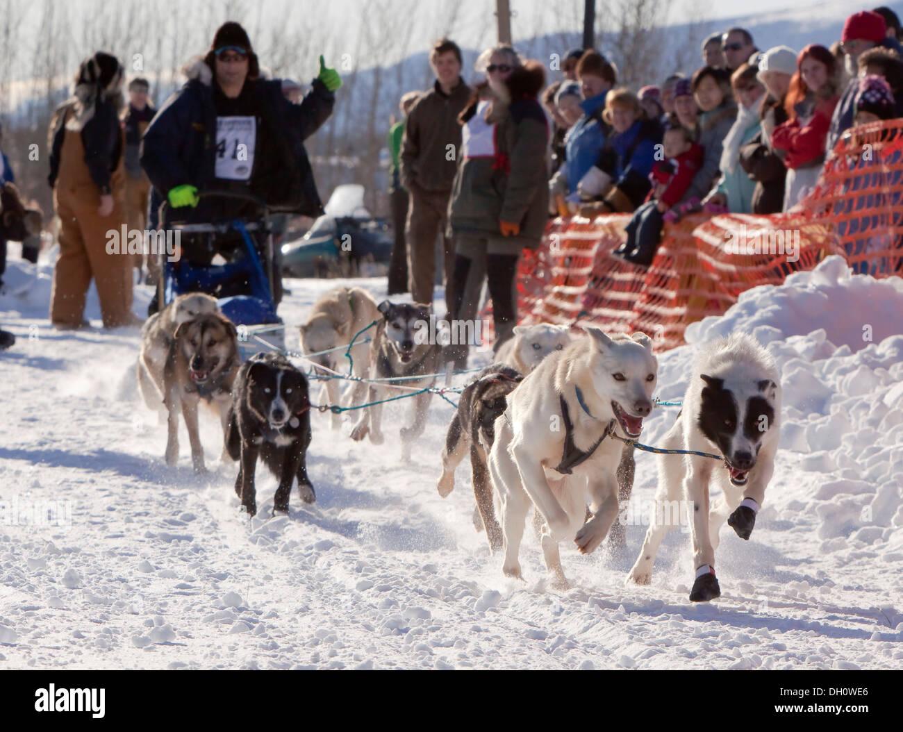 Yukon Quest and Iditarod musher Hugh Neff giving a thumbs up, dog sledding, mushing, running sled dogs, Alaskan Huskies, dog - Stock Image
