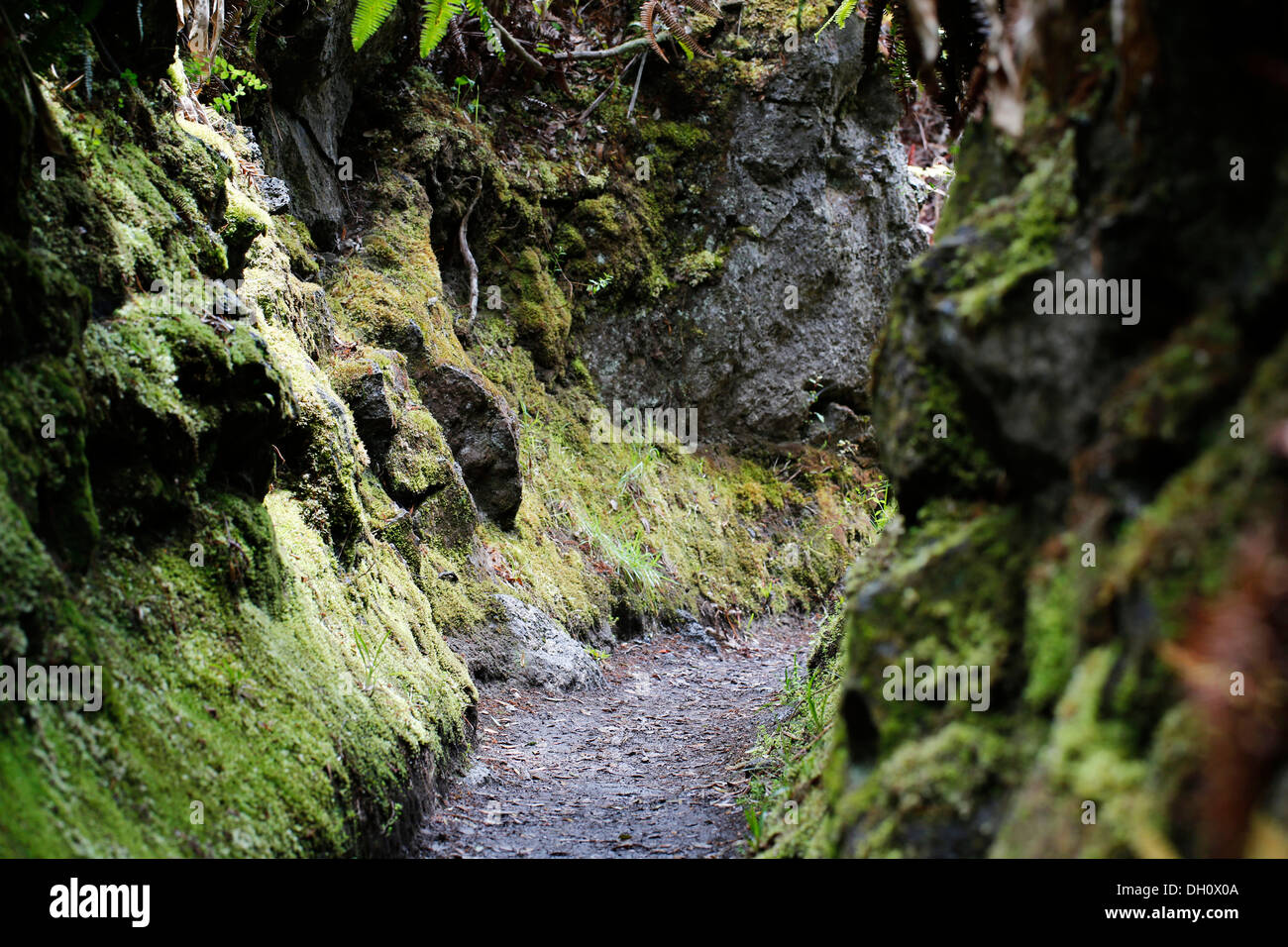 Narrowing of the path, Halemaumau Trail 'Into the Volcano', down into the caldera, Kilauea Volcano - Stock Image