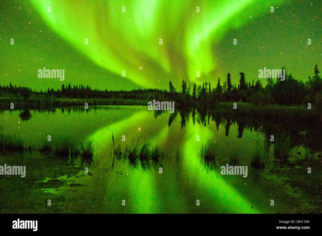 A Beautiful Skyline Of The Northern Lights Aurora Borealis In Yellowknife  Yukon Territories Canada