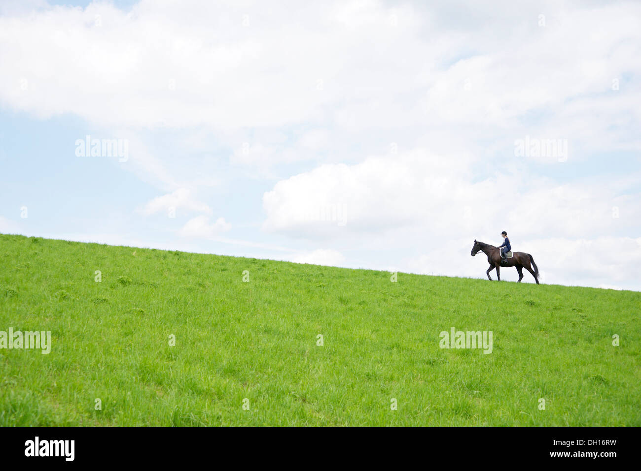 Woman Riding Horse in Rural Landscape, Baden Wuerttemberg, Germany, Europe - Stock Image