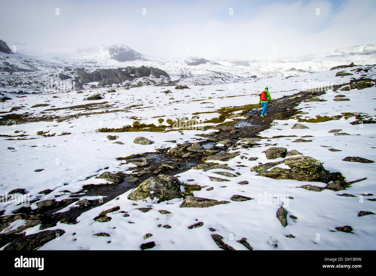 Man speed hiking along snowcapped terrain, Norway, Europe - Stock Image