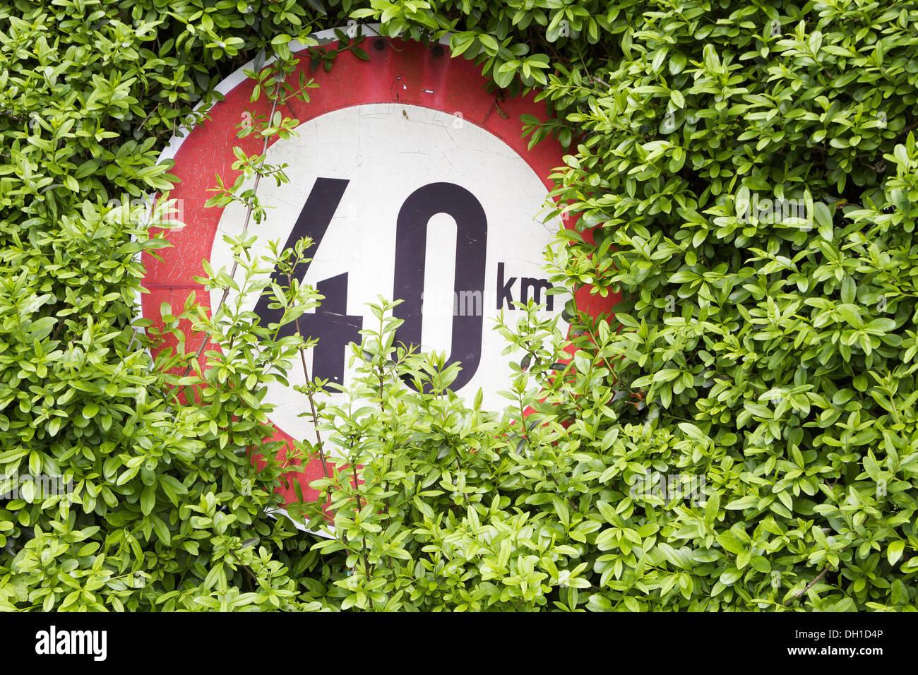 overgrown traffic sign Stock Photo