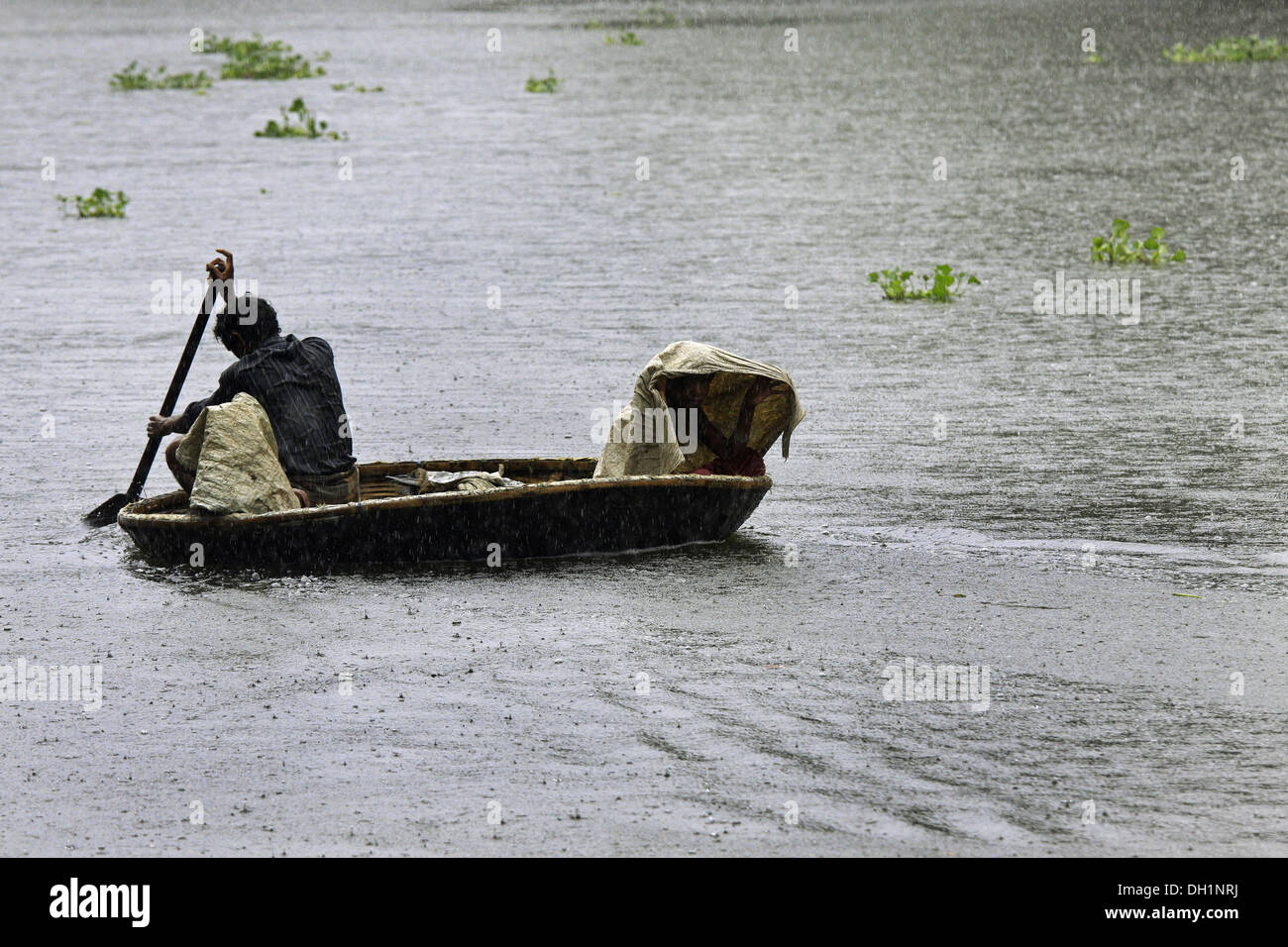 man rowing paddling circular round boat punnamada lake Alleppey Kerala India - Stock Image