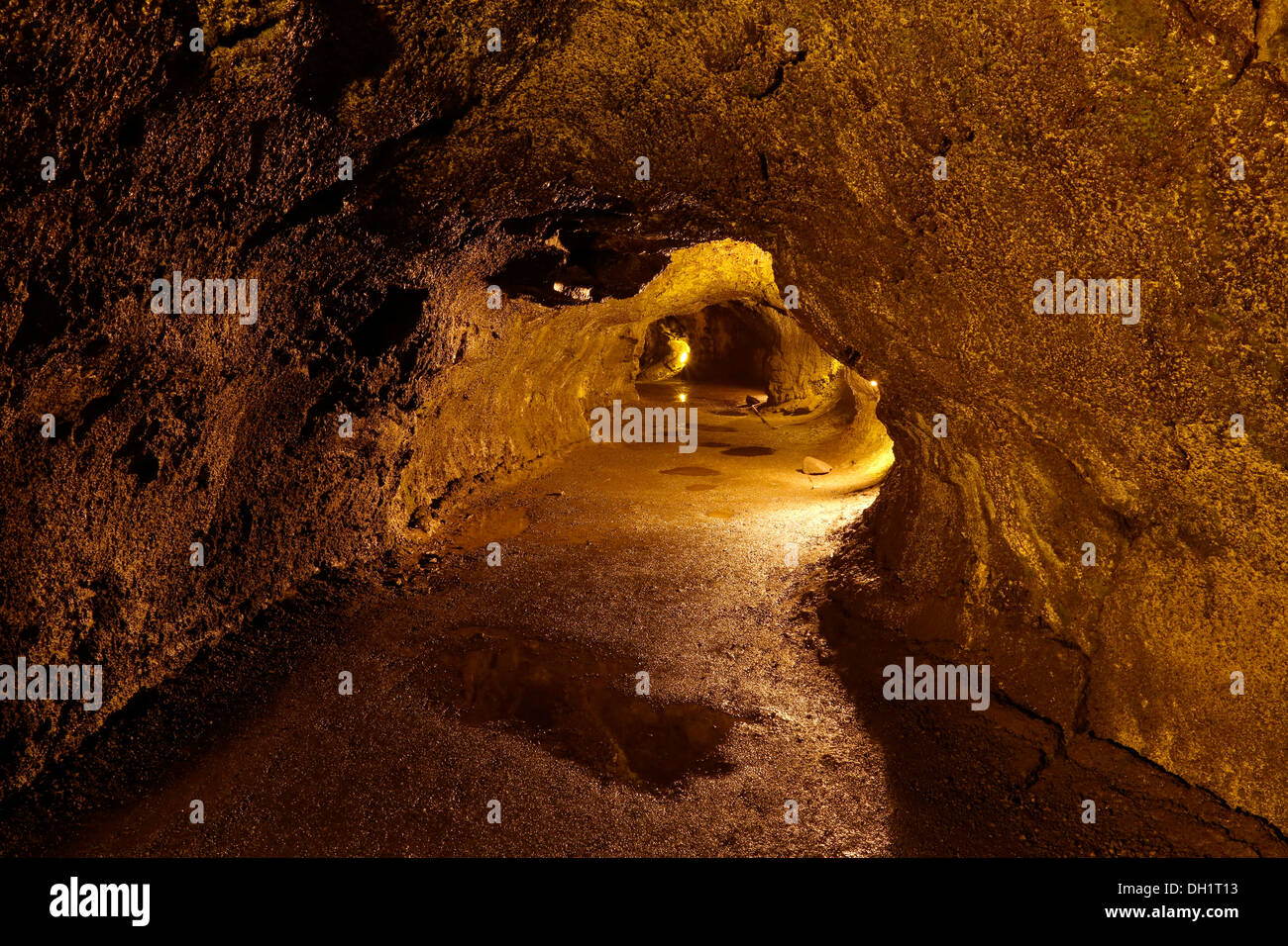 Thurston Lava Tube, Hawaiʻi Volcanoes National Park, Big Island, Hawaii, USA Stock Photo